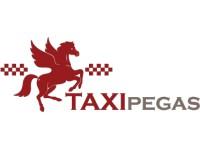 """Логотип Транспортная компания """"Пегас"""", ООО"""