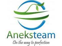 Логотип Анэкстим, ООО