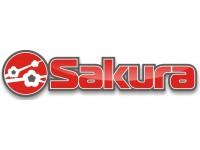 Логотип 7 Лепестков сакуры