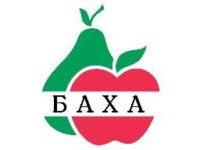 Логотип Баха, ООО